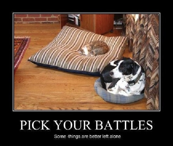 Image result for pick your battles